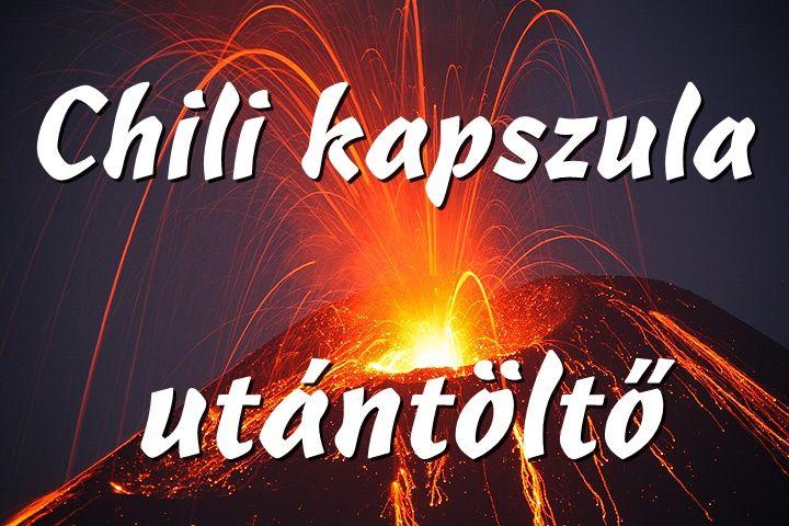 SZAKACSKONYV_HAZAI_IZEK_UJRAGONDOLVA